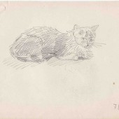Кошка. 7.11.1958