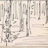 Опушка, стволы, 1960-е