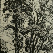 Кроны деревьев 1965 (?)